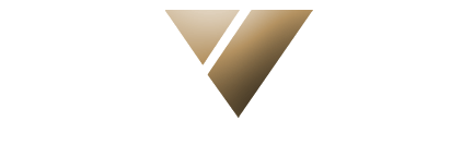 Vanguard Professional Staffing Inc Logo